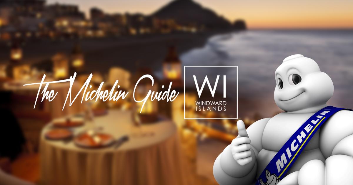 The Michelin Guide-blog