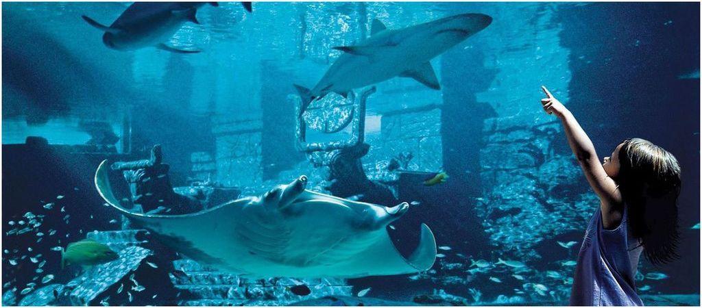 La Marine Habitat At Atlantis, Bahamas