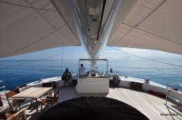 Black Swan (ex Rafoly) Blubay Catamaran 92 Exterior 4
