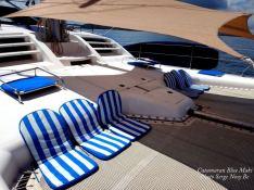BLUE MAKI  Robertson & Caines Leopard  47 Interior 1