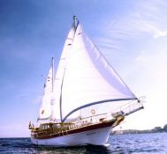 Custom Ketch  20M