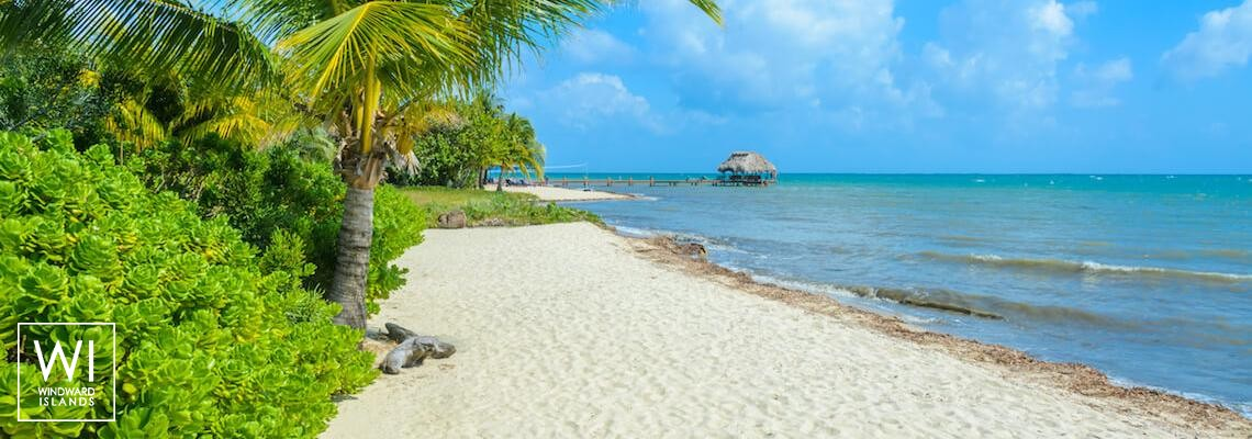 Yacht charter Placencia - Belize - 1