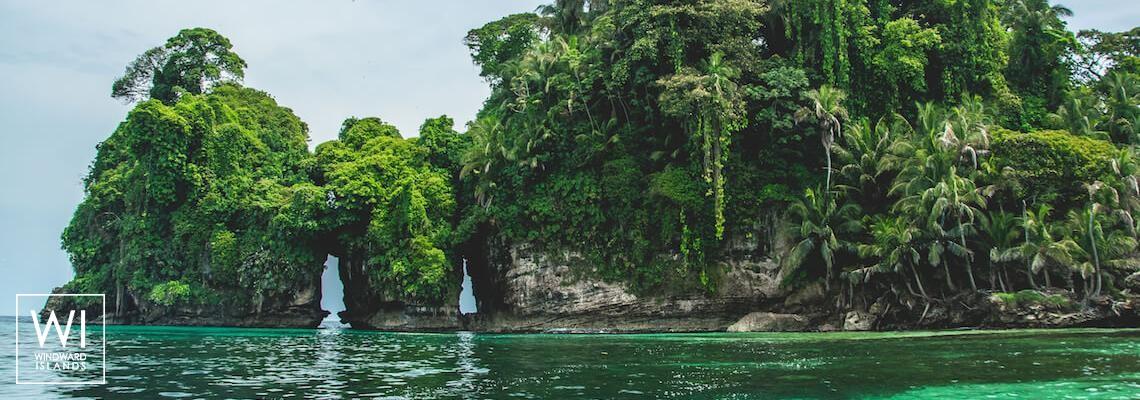 Bird Island, Bocas Del Toro, Panama - 1