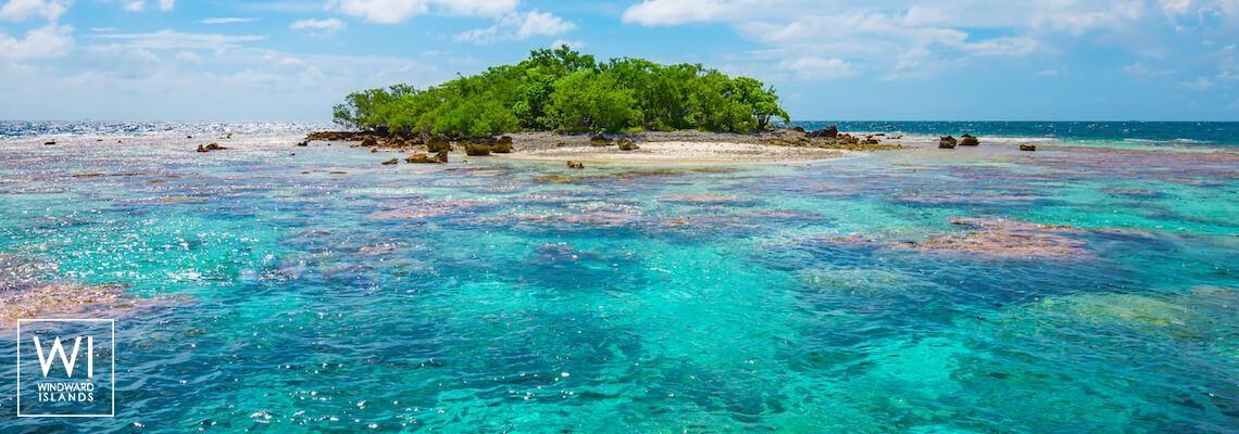 Fakarava, Tuamotus, Polynesia - 1