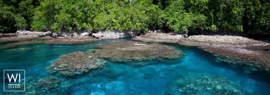 Isole Salomone - 1