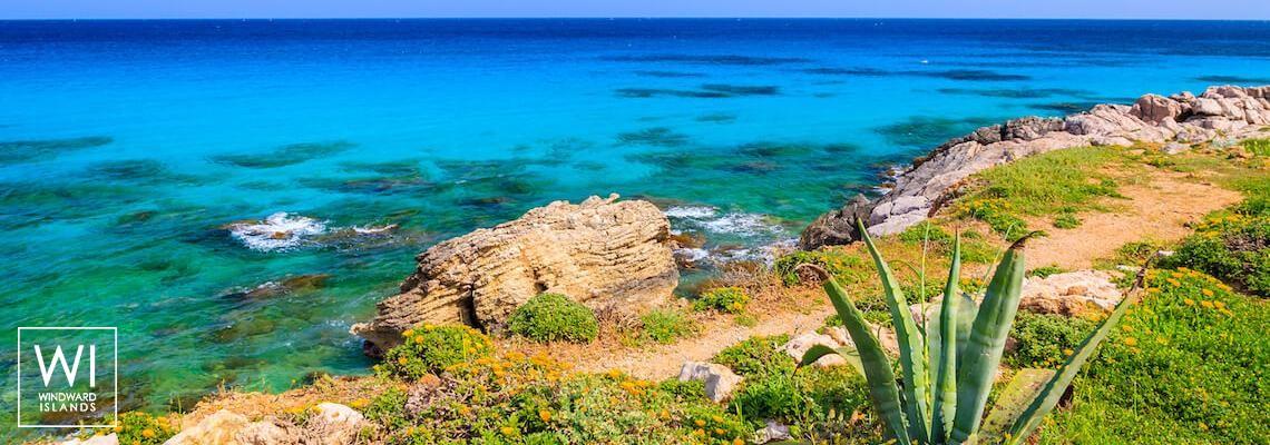 Palma de Mallorca - Baléaric, Spain - 1