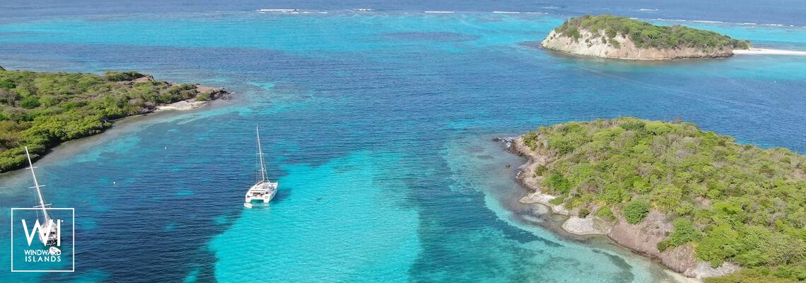 Tobago Cays - Saint-Vincent-et-Les-Grenadines - 1
