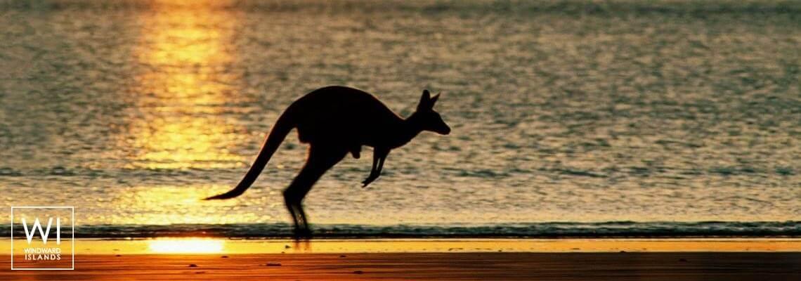 Australie - 1