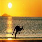 游艇租赁 澳大利亚